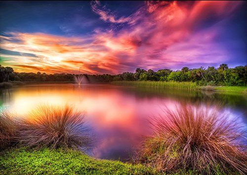 Sunset lake purple grass reflection, Black colour - From £17.50 | Metal Plate Pictures