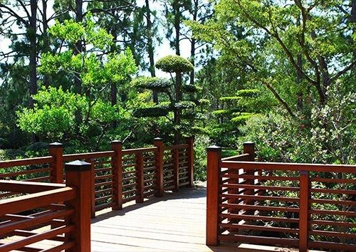 Gardens Japanese Bridge Tree, Black colour - From £17.50 | Metal Plate Pictures