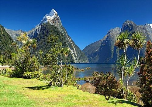New Zealand Milford Sound Mitre Peak places trees, Black colour - From £17.50 | Metal Plate Pictures
