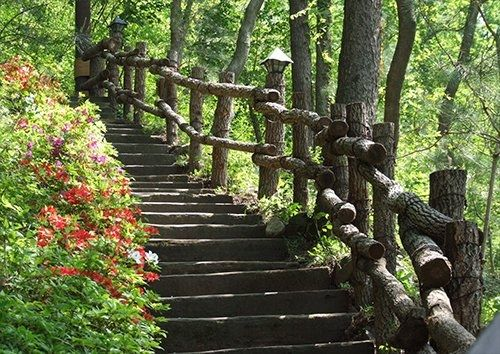 Woodland Stairs trees, Black colour - From £17.50 | Metal Plate Pictures