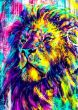 Lion art colourful aa, Black colour - From £17.50 | Metal Plate Pictures